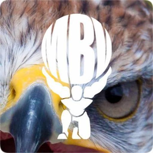 Thawed Hawk