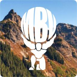 mountain huckleberry.jpg